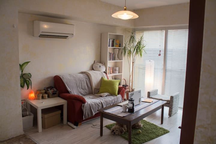 Private room for two near New Bulgarian University