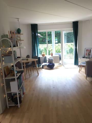 Stor lys stue med sovesofa og mulighed for at dele rummet i to med gardin.