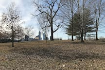 A great dog park is over on New York street with a full skyline view of Indy!