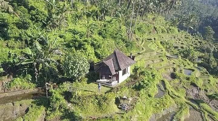 Bali Romantic House on rice terrace