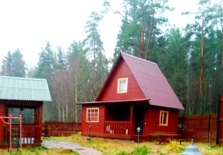 Уютный домик с баней
