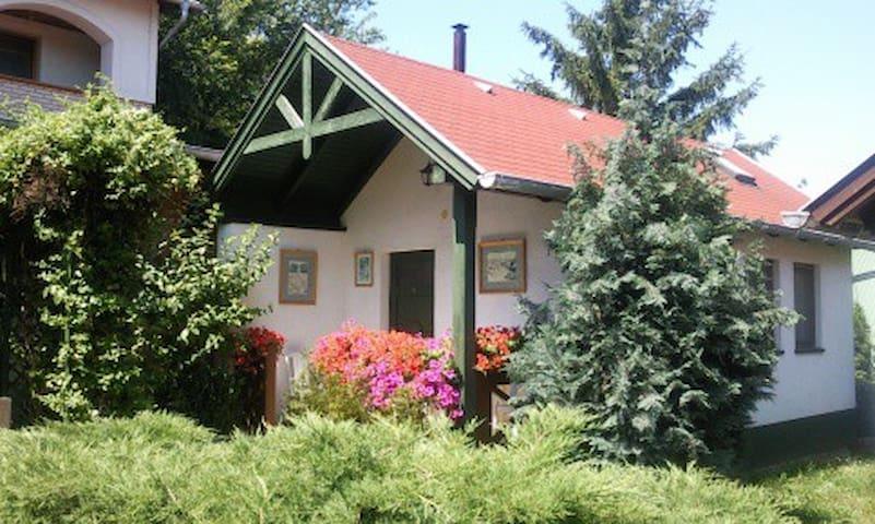 Falusi szálláshely - Hidegség - Domek parterowy