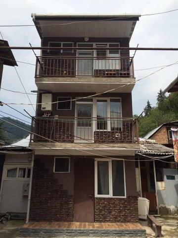 Borjomi Apartament For Rent - Borjomi - Flat