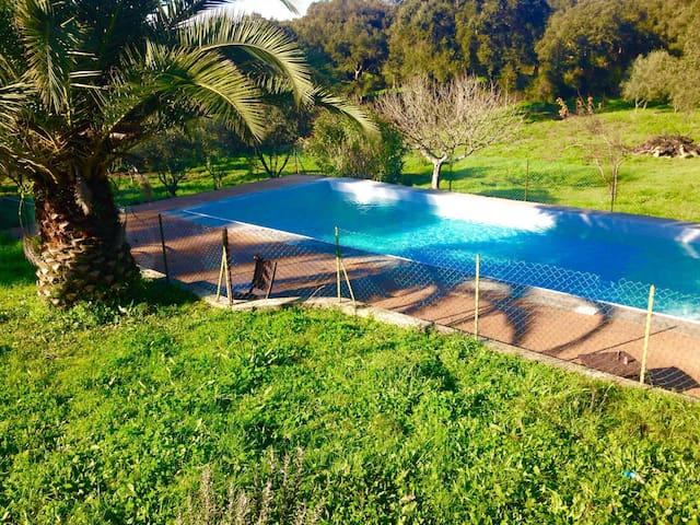 maisonette avec piscine entre mer et montagne - Sartène - Casa