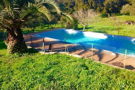 maisonette avec piscine entre mer et montagne - Sartène - Dom