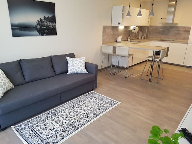 New apartment close to the center-30% in januar