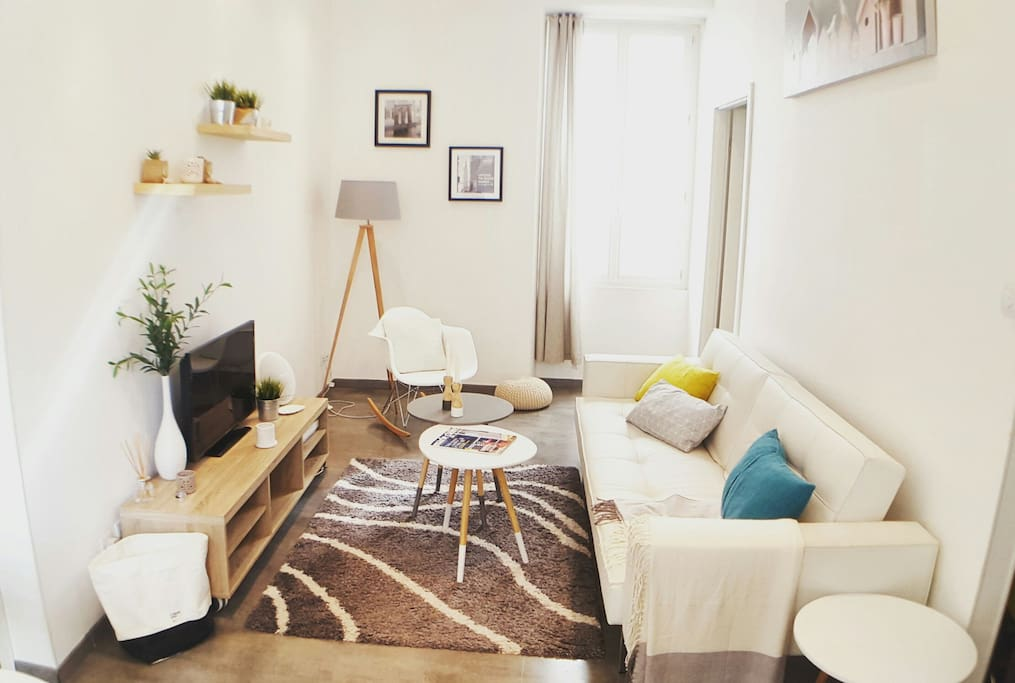 Cozy cocoon in the heart of nice appartements louer for Chambre a louer sur nice