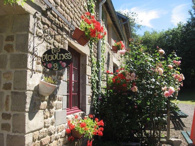 Gîtes Saint Michel - Les Pivoines - La Chapelle-Cécelin - Dom