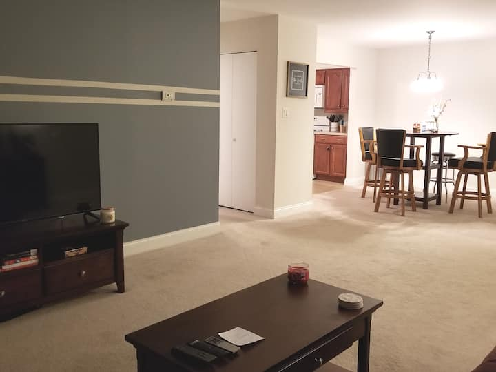 Entire apartment, great location!