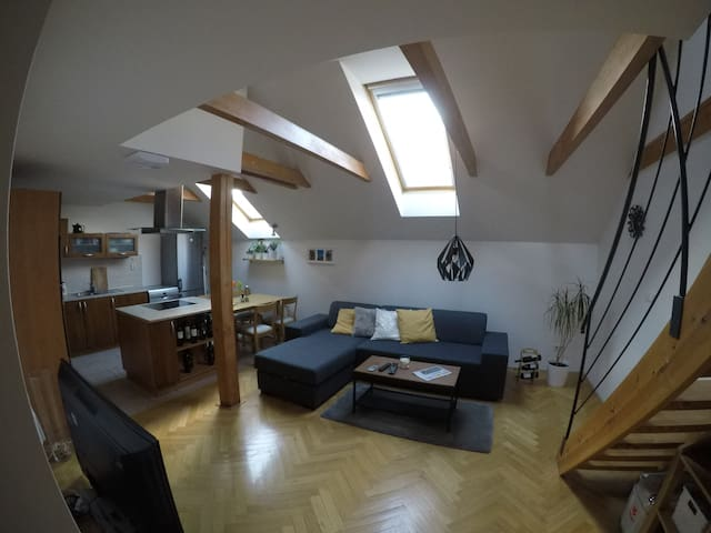 Sunny flat in the best location - Praha - อพาร์ทเมนท์