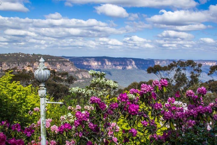 Sterling Manor Katoomba ~ Escarpment Views Echo Pt