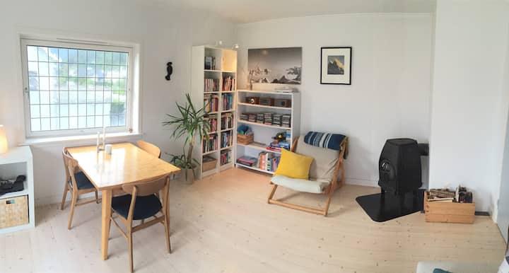 Cozy apartment in Åndalsnes