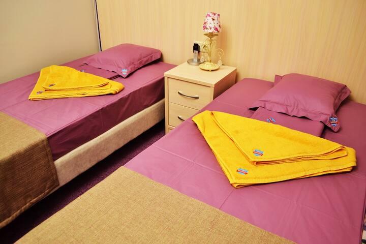 Номер с двумя раздельными кроватями TWIN в Отеле - Moskva - Gästhus