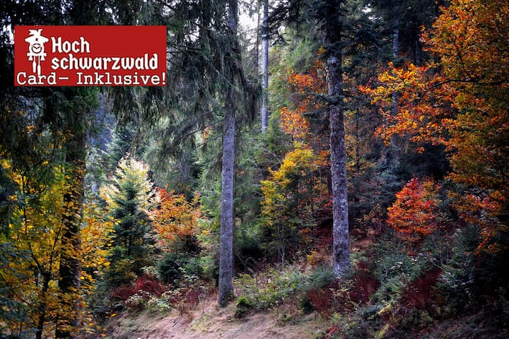 Studio A3 for 2 people Black-Forest-Card incl.