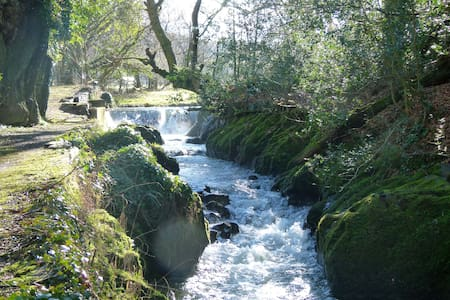 Charming room overlooking waterfall - Machynlleth - Lain-lain
