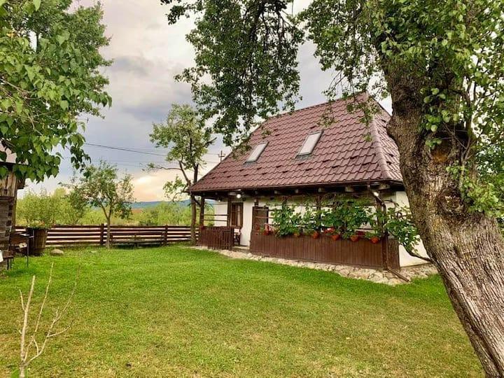 Traditional House in Maramures, Transylvania