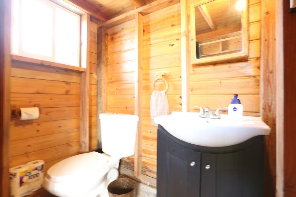 A small bathroom has it all