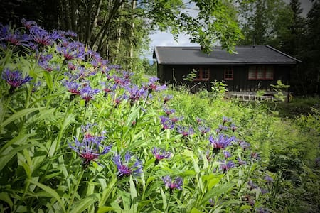 Hideaway in the forests of Oslo (with parking!) - Cottage