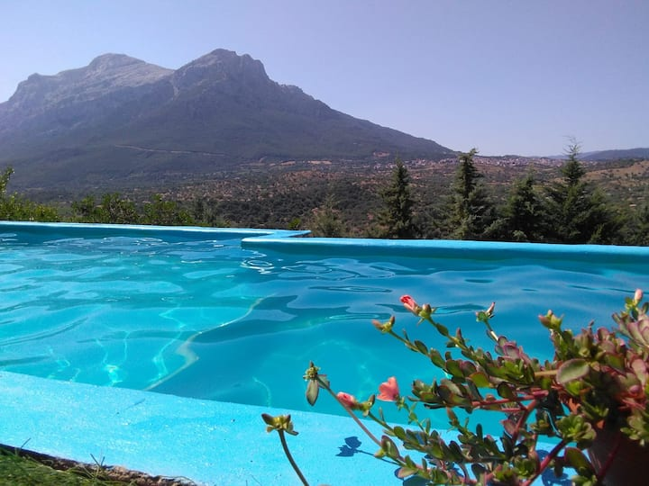 Villa L'Oleandro, amazing view with pool and A/C