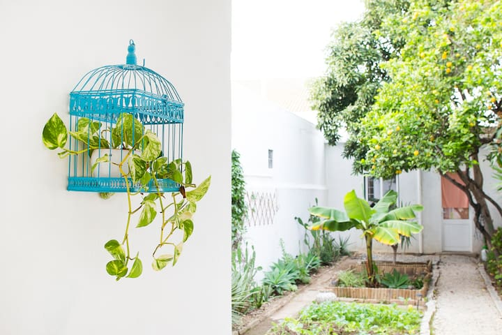 Lemon Verbena Room at The Backyard House - Far - Pensió
