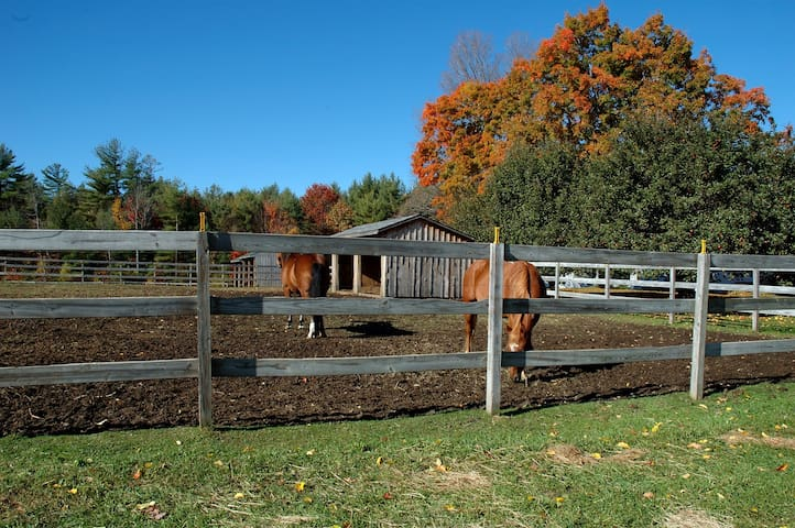 Farm house with hot tub on a 150 acre horse ranch.