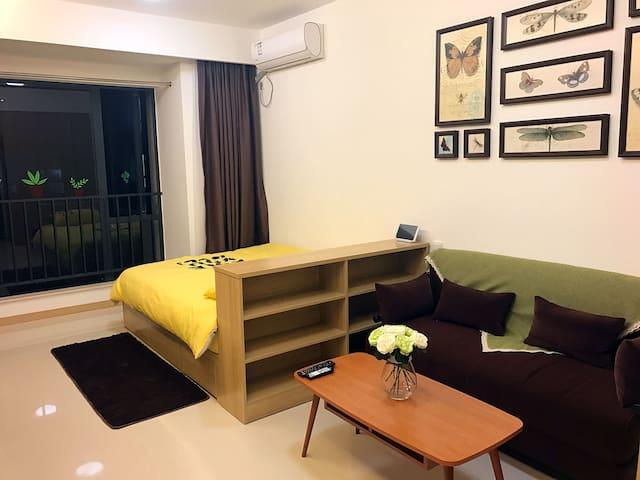 东莞城区中心毗邻地铁口商业区万科城市广场39平方整套公寓 - 东莞 - Daire