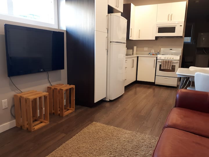 Brand New 1BR Private Basement Suite in Saskatoon