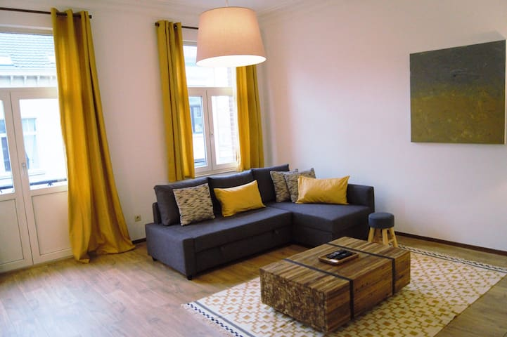 Bel Appartement Quartier Européen 2