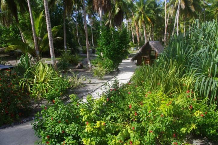 Une Retraite De La Jungle De Bali Entourée De Verdure Luxuriante