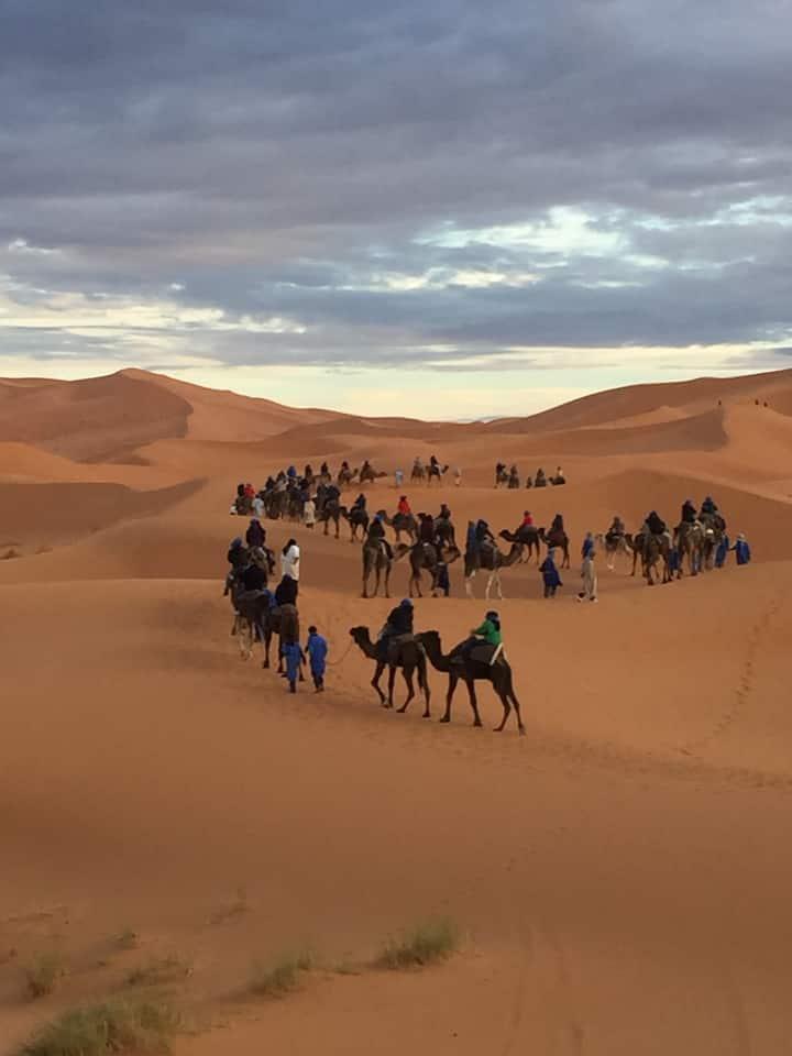 Campamento nel desierto, paseo con dromedarios