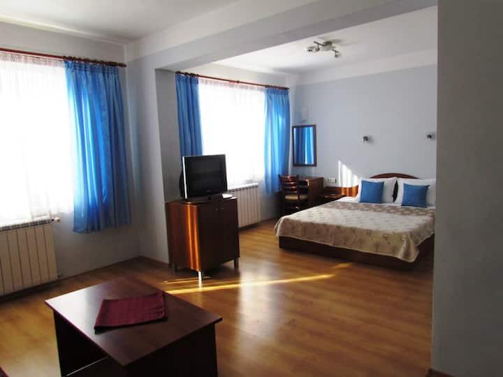 Spacious Apartment with a Mountain View