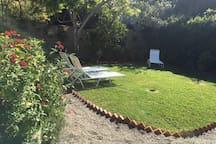 Lower yard #1