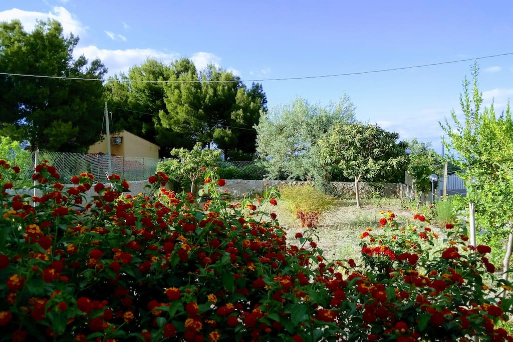 Cozy Country Cottage Houses For Rent In Noto Sicilia