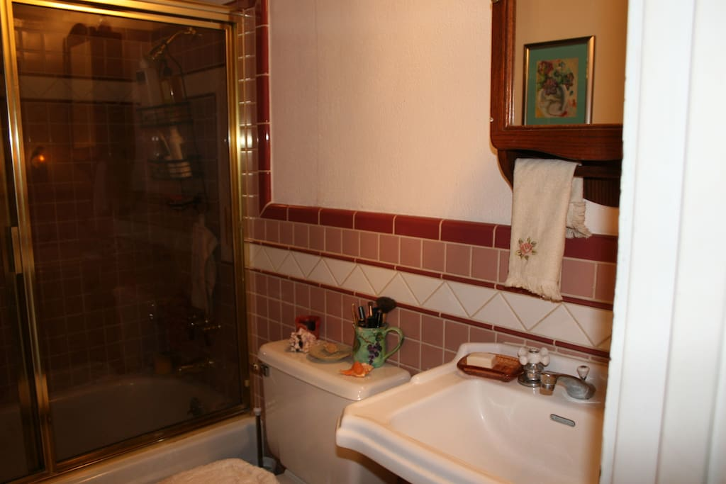 shared bathroom with large tub/shower & bubble bath