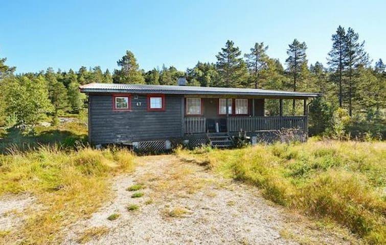 Koselig hytte på Bortelid - Åseral kommune - Cabaña