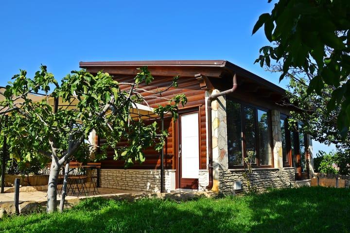 Salvo & Silvana's Garden