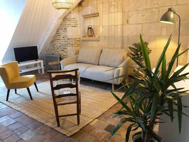 """""""La Scellerie"""" bel appartement plein coeur Tours"""