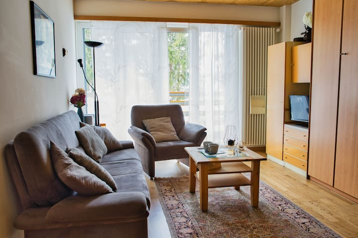 Bright living room with comfy couch and also access to the balcony. There are additional two wardrobe beds in the closed on the right side of the picture.