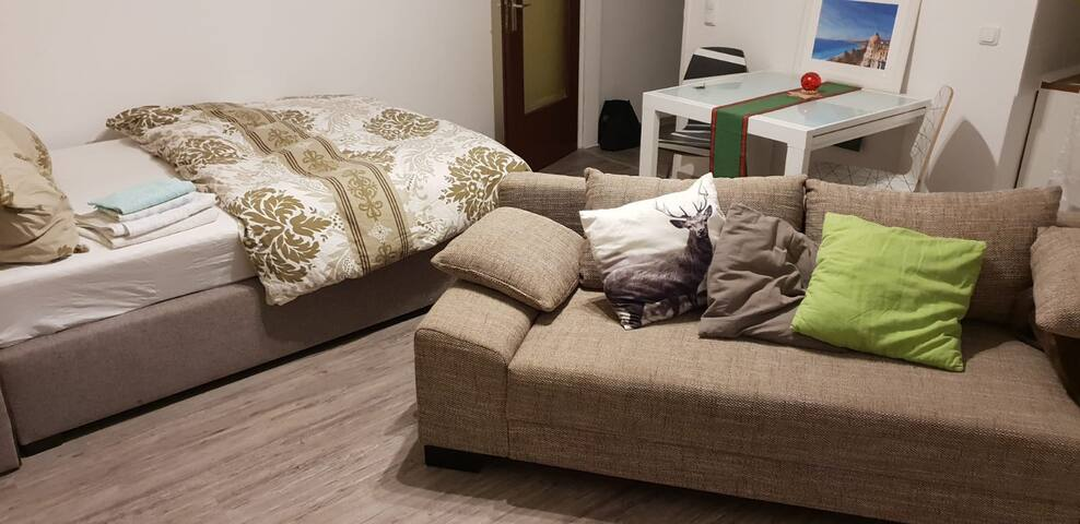 very nice apartment up to 4 guests in LU-Center