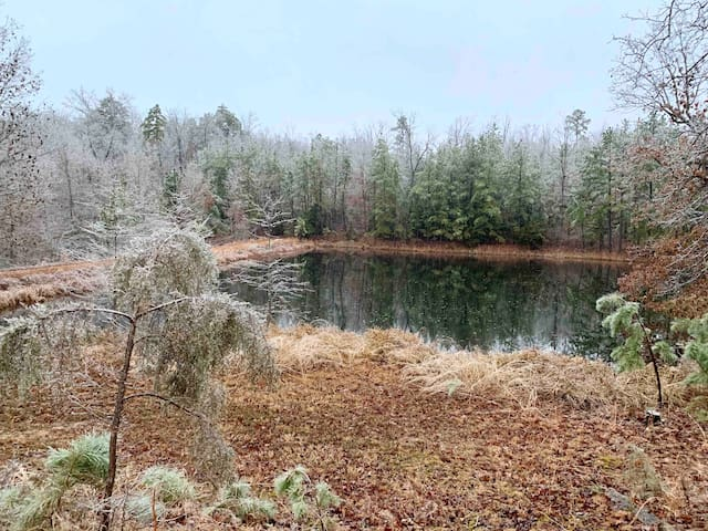 Winterscape of pond