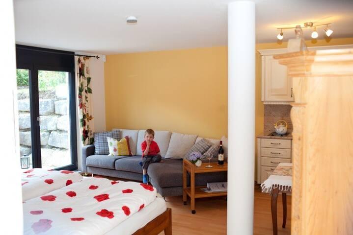 Ferienappartement Barbara (Überlingen), Ferienwohnung West