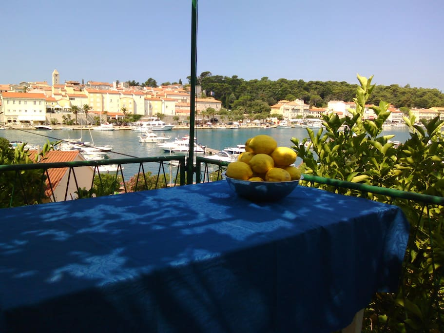 View from terasse and homegrown lemons