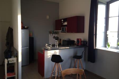 Bel appartement avec mezzanine - Laon