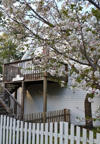 The Vineyard Loft - Manteo - Guesthouse