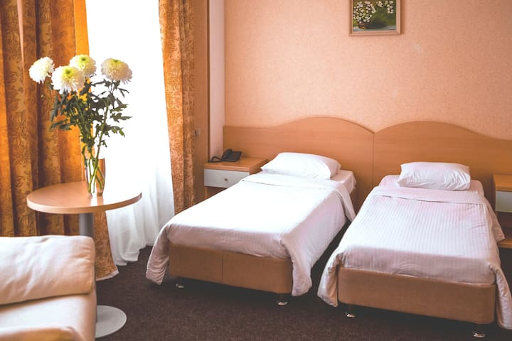 Стандарт без балкона с раздельными кроватями 2