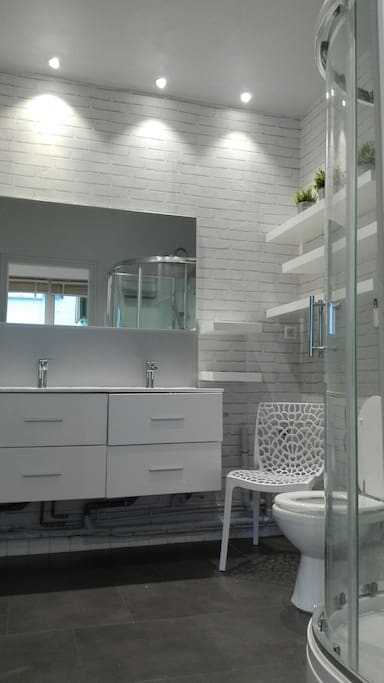 La salle de bain avec douche et wc