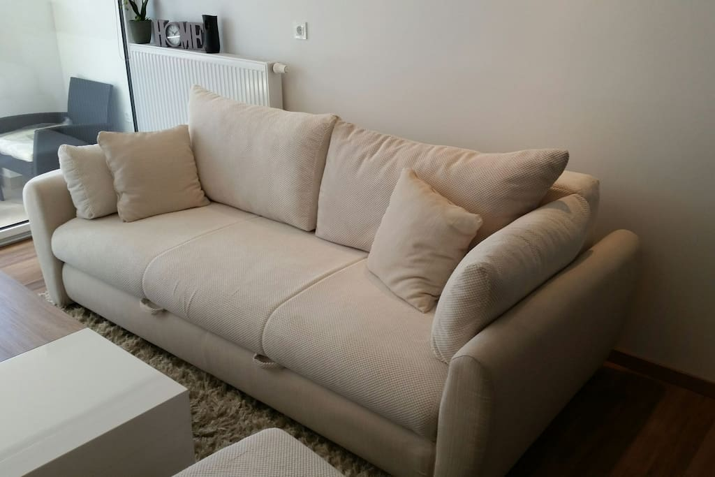 Comfortable Pull-out sofa for 2 (160x200)