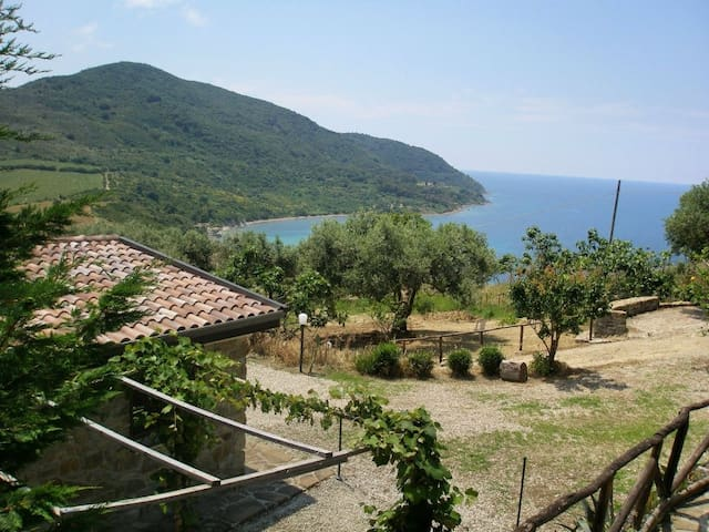 Agropoli - Mare - Relax - Stupendo panorama - Agropoli - House
