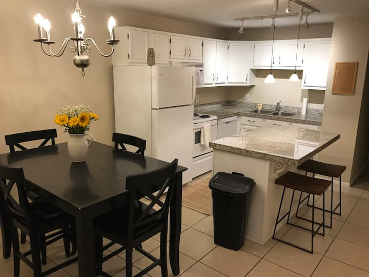 ★ MONTH DISCOUNT Cute, Centrally Located Ski Apt ★