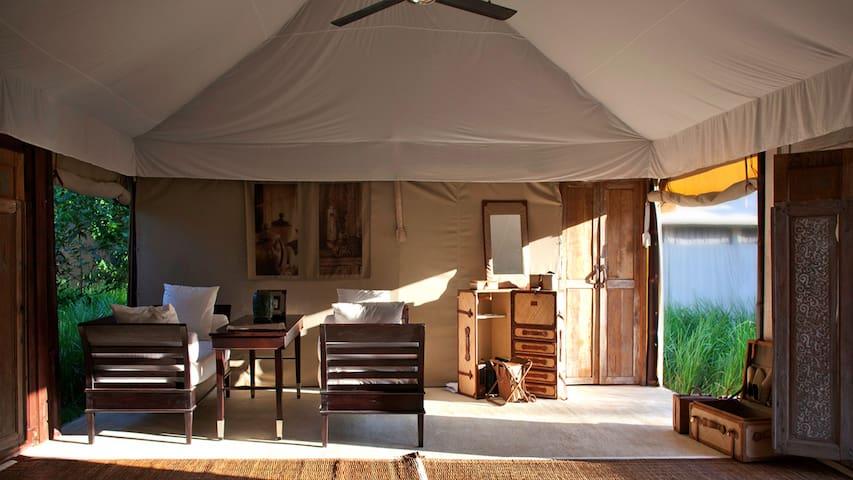 THE BEIGE -Luxury Tent 5m*15m-